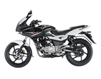 pulsar 220cc for rent