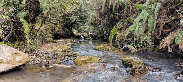 waterfall near chisapani